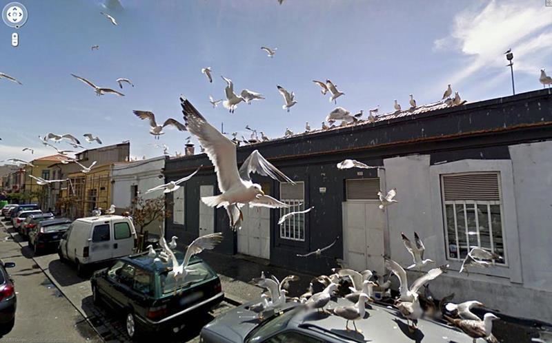 funny-google-street-view-photos-6